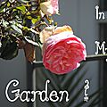 Windows-Live-Writer/Dams-mon-jardin_C73C/DSCN1302