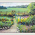 Le jardin fleuri de <b>Gaby</b>