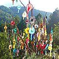 sculpture arboricole soeillade