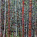 Série des forêts