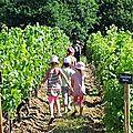 Apprenti.e.s vigneronnes et vignerons