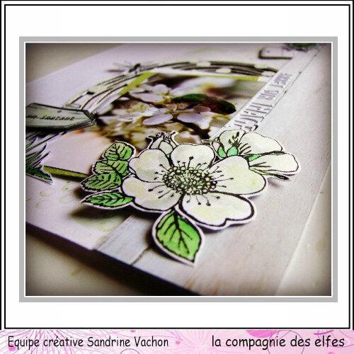Sandrine VACHON page DT LCDE mai (4)