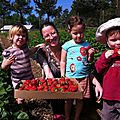 Pickin' strawberries at waller farm!