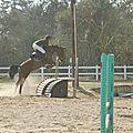 Matériel d'équitation à vendre