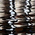 Reflets vénitiens (9)