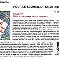 18a_Nicole FORT-EVANS, Jackie CAWTHRAY-POUR LE SOMMEIL DE COMFORT-Quilt La Fugitive18