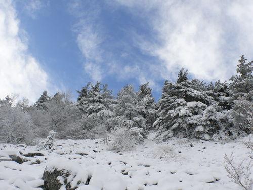 2008 10 30 Paysage de neige avec un ciel presque bleu