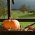 Journée d'automne
