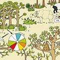Jeux - Forêt d'Asie