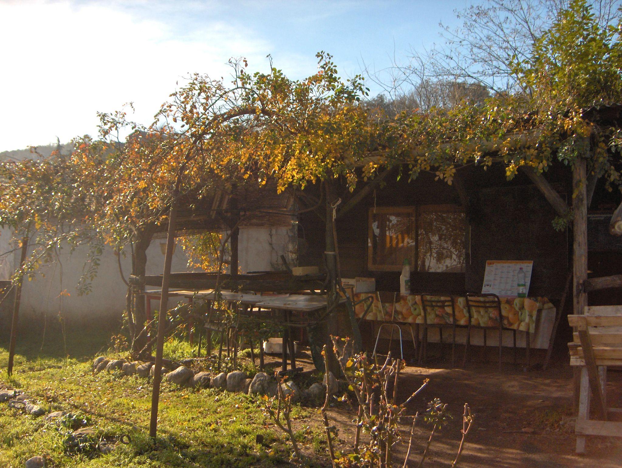 cabane d'automne