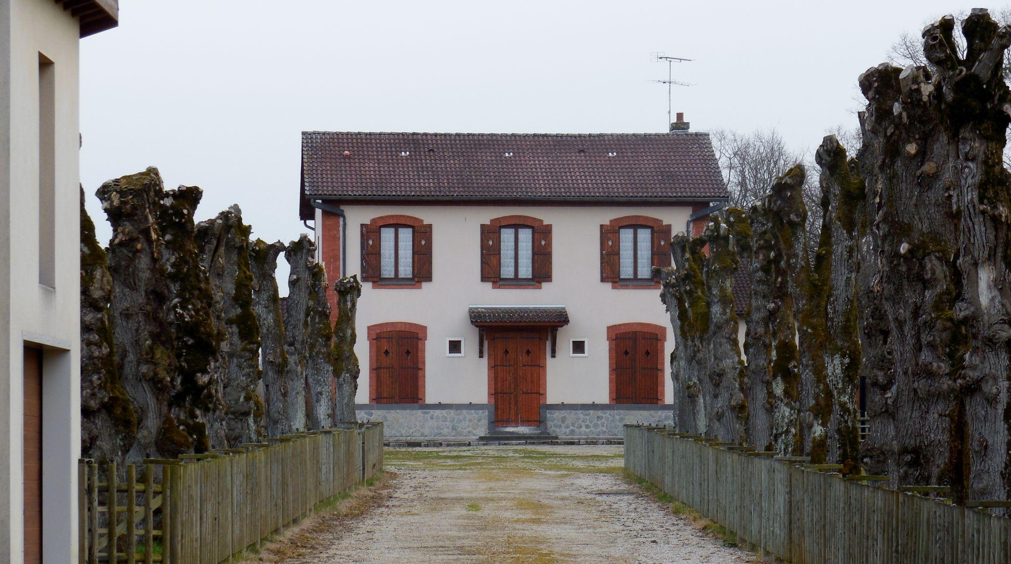 Courty (Puy-de-Dôme)