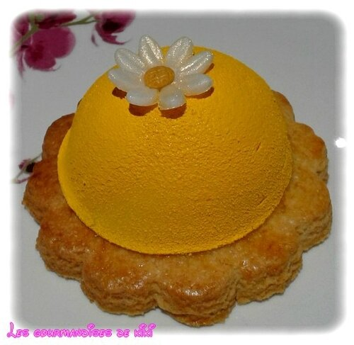 Dôme citron et son coeur coulant framboise