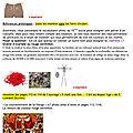 Exemple fiche de déroulement de la séance (atelier costume) page 3