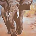 éléphant3