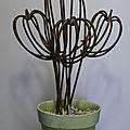 Cactus cactus en fer à béton de hauteur 60 cm