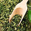 Le thé vert et ses effets sur la santé