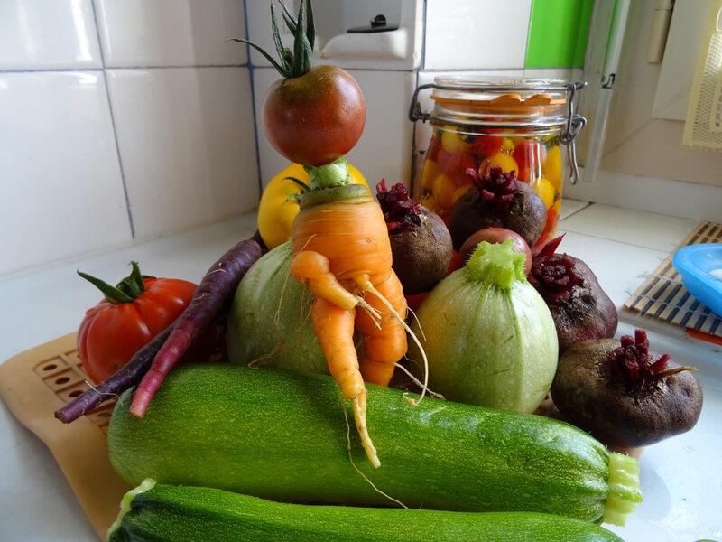 légumes du potager