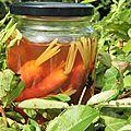Baby carottes violette en pickles à l'aigre-douce pour des casse-croûte embarqués impertinents!