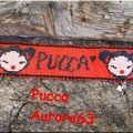 Pucca, ande