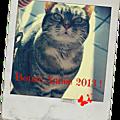 Premier jour 2013 !