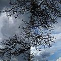 Double ciel.