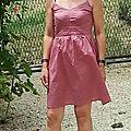 Une centaurée en provence