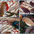 Carnet annuel 2014- avril - le rouge-gorge