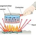 1ere ES, TP 7: comment notre corps échange-t-il de l'<b>énergie</b> avec son environnement?
