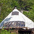 tribu vivace yurtao 19