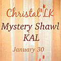Mystery shawl kal de christallittlekitchen (christelle nihoul) - indice 1