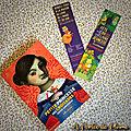 Fête du livre jeunesse de villeurbanne + chasse aux belles