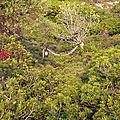 Bivouac à Peristera — P1010454