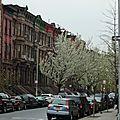 DAY 5 : Harlem