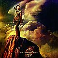 Poster Katniss Everdeen Catching Fire VO