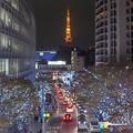 Vues de Tokyo (1)