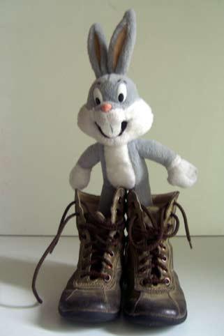 les chaussures du lapin