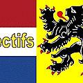 Néerlandai