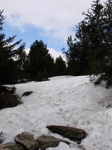 2008 04 24 Sur le chemin en direction du sommet du Mézenc (5)