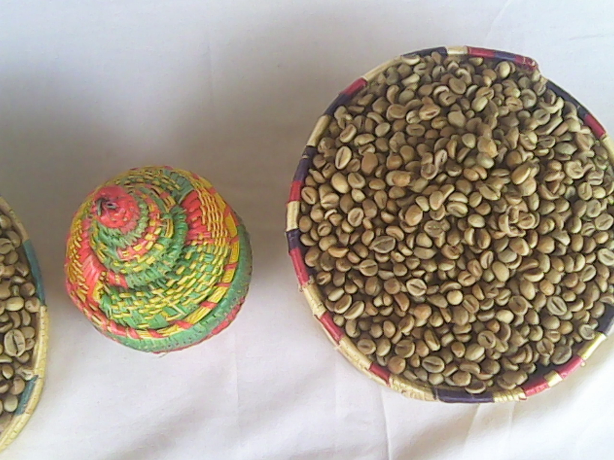 Coffee production: Cameroonian production continues to drop off