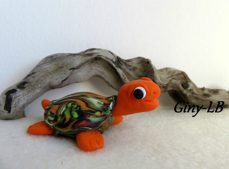 tortue - oct