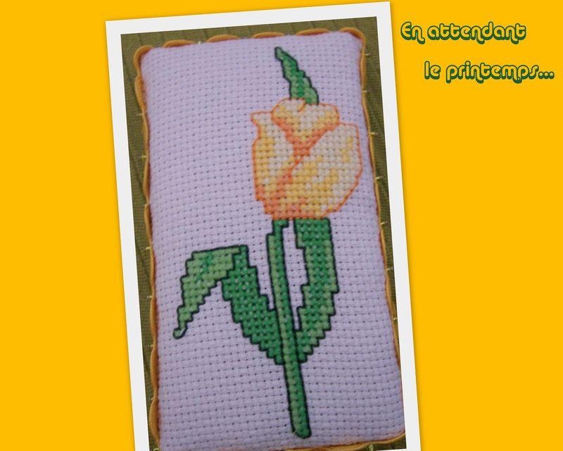 Pinkeep Tulipe