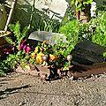 De la rouille au jardin...