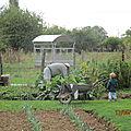 Le jardin de Cruik : Les fleurs, les légumes..., les recettes qui suivent....., le reste...et bien entendu Cruik