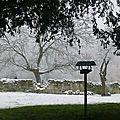 La mangeoire des oiseaux aux prises avec le manteau neigeux .