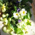 Première salade aux fleurs, le printemps dans l'assiette !