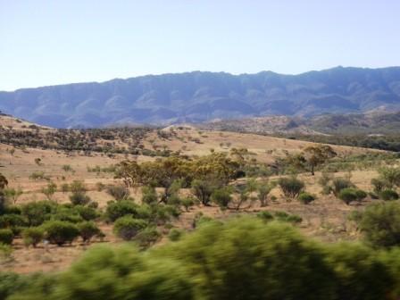 Australie Faune Flore Paysages - janvier 2005 (23)
