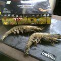 Les crevettes black tiger : boutique en ligne