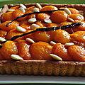 Tarte aux abricots caramélisés selon christophe felder trop bon l 'une de mes préférées
