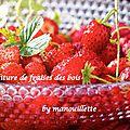 Confiture de fraises des bois