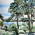 Vue sur la baie depuis le jardin; en Bretagne